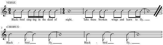 Melodic Rhythm - Blackbird