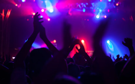 Audience at a rock concert
